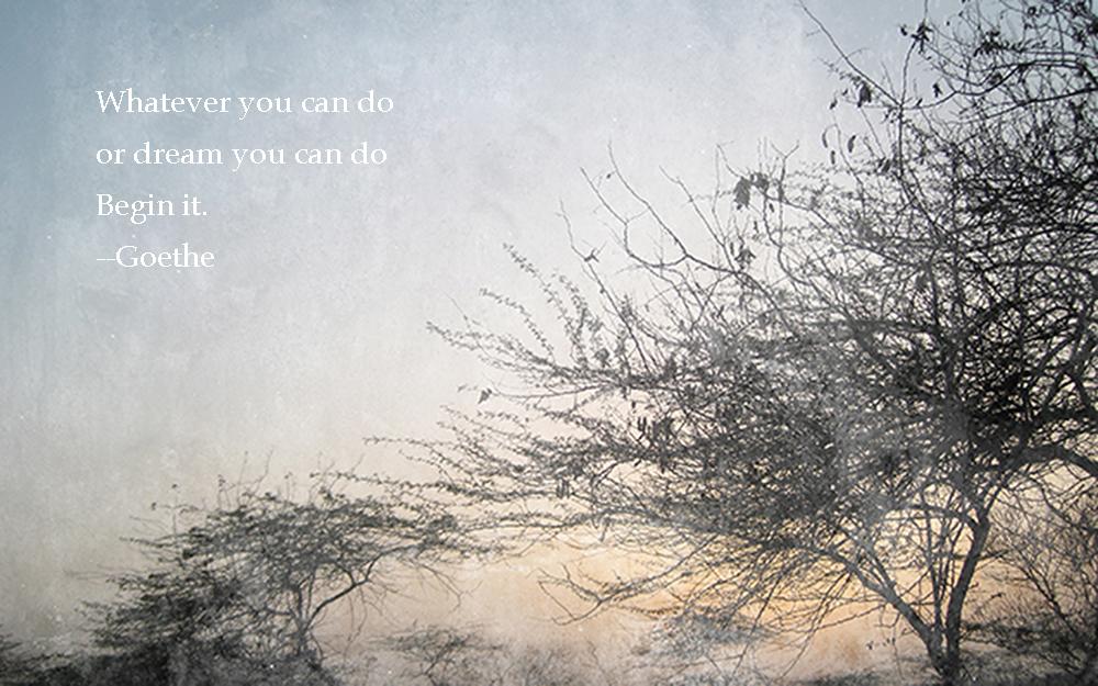 Goethe-Quote-Dream.jpg