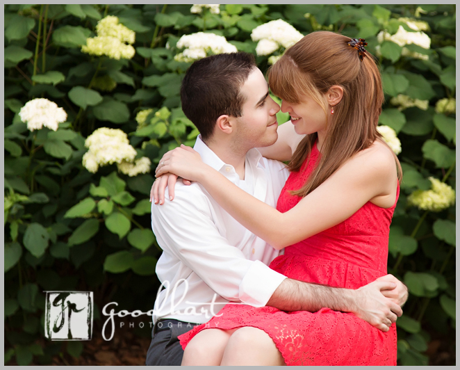 sweet engagement portrait northern virginia