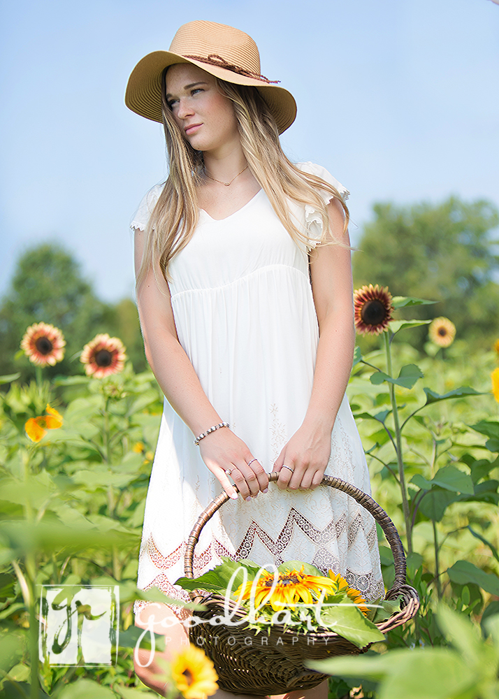 sunflower fields and senior pictures